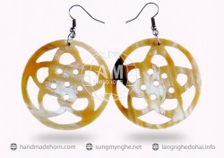 Horn Earrings  (13)