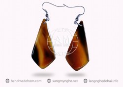 Horn Earrings  (40)