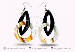 Horn Earrings  (46)