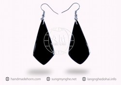 Horn Earrings  (6)