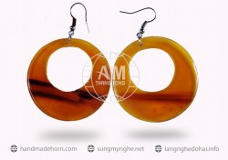 Horn Earrings  (7)