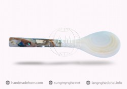 Salad spoon fork horn (27)